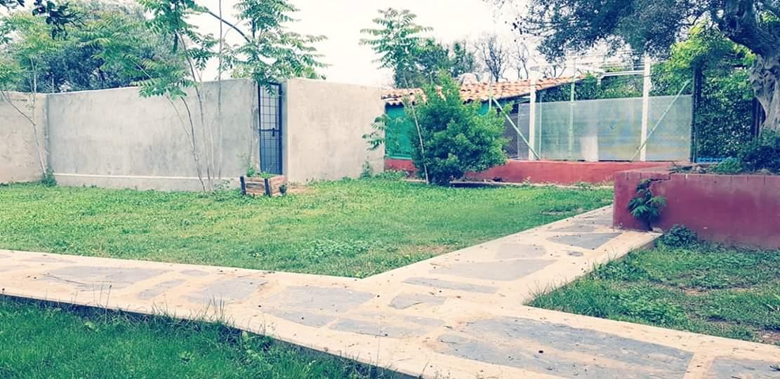 Residencia-canina-los-hueros6
