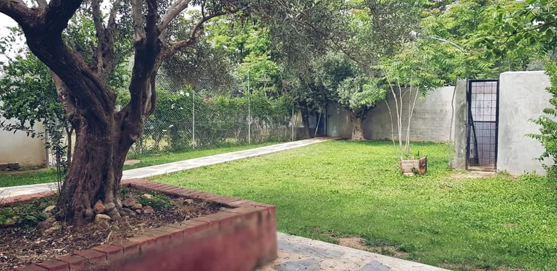 Residencia-canina-los-hueros7
